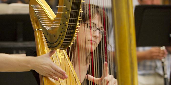 Harp_student